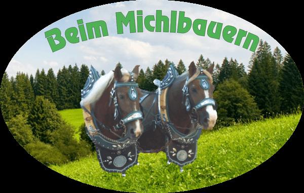 Pferdekutschfahrt beim Michlbauern